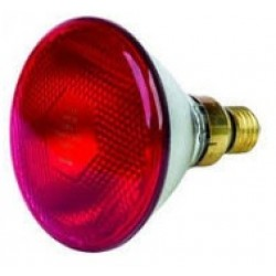 Инфракрасная лампа для животных