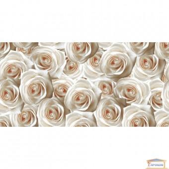 Изображение Декор Камелия (розы) 25*50