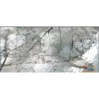 Изображение Декор Магия 23*50 Д 61071-1 купить в procom.ua