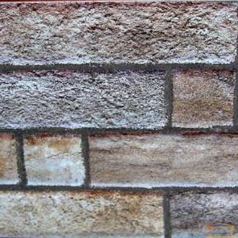 Изображение Плитка Вавилон 3 тип 1 50*20 беж купить в procom.ua