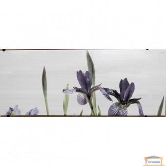Изображение Декор Ирис 20*50.29 тип 1 купить в procom.ua
